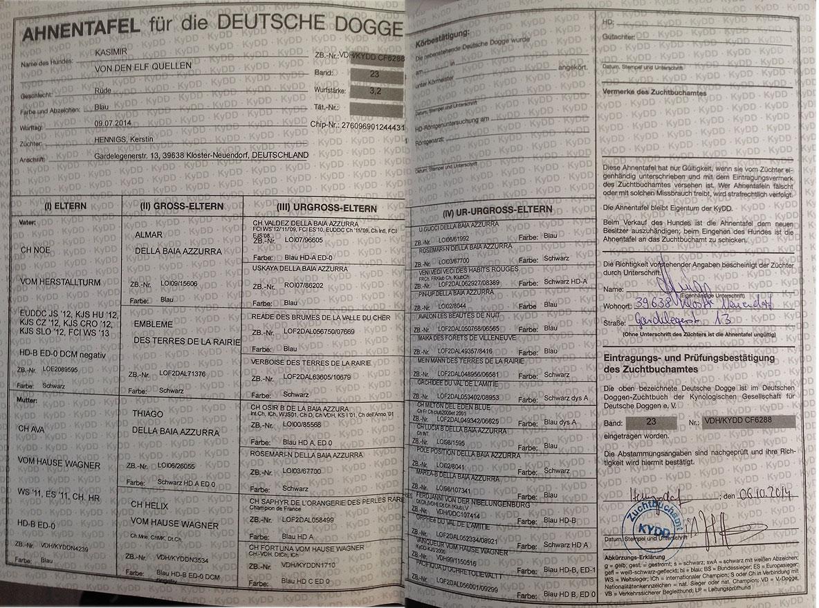 Deutsche doggen elf quellen